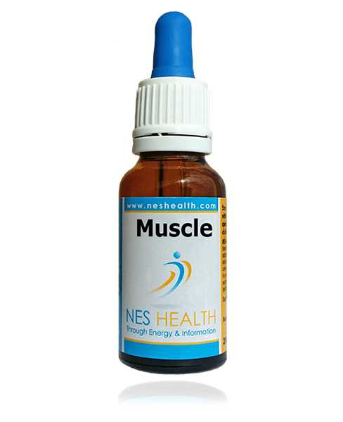Muscle Infoceutical