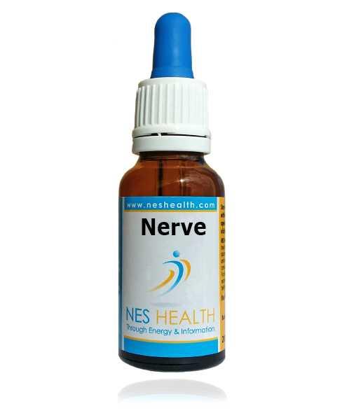 Nerve Infoceutical